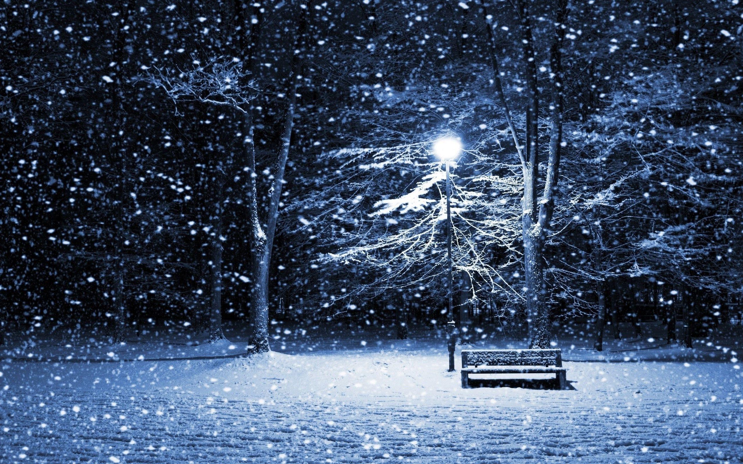 Wallpapersxl Snow Night Hd Widescreen In Nature 1054071 2560x1600